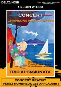 Affiche Delta Noir Concert Trio Appasiunata